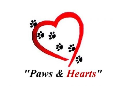 Paws and Hearts Animal Assisted Therapy