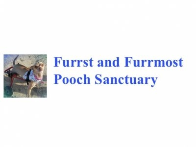 Furrst and Furmmost Pooch Sanctuary