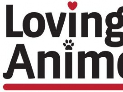 Loving All Animals